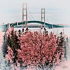 Mackinac Bridge 101310 by Theodore Black