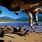 Wilsons Promontory by Travis Easton