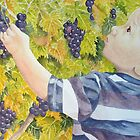 Le Petit Vendangeur (The Little Grape Picker) by FranEvans