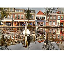 The world from a Swan's point of view Photographic Print