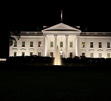 The White House by Carol Bock