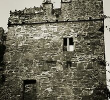 Castle Ruins, Portaferry, Co. Down, Ireland by esquiresque