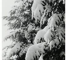 Oldskool Winter by AnnoNiem Anno1973