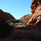 Light & Shade on Kings Canyon, N.T. Australia. by Rita Blom