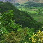 Borrowdale by WatscapePhoto