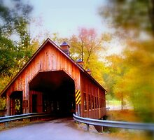 Emerts Covered Bridge by lynell