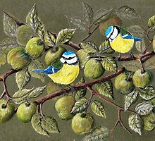 Blue Tits and Crab Apples by Jorja