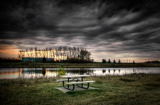 Picnic Table by the Pond by Myron Watamaniuk