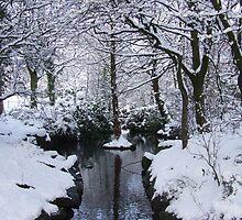 My Secret Place - Stamford Park, Lancashire by dawnandchris
