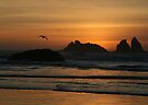 Bandon Beach at sunset by Dave Davis