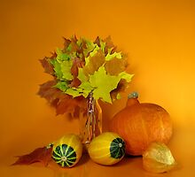 Orange Still life  by JuliaPaa