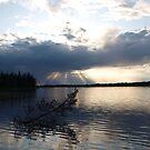 Rays of hope by Janne Keinänen