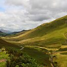 The Beautiful Newlands Valley by Paul Bettison