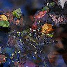 autumn mosaic by Joseph Valcourt/Modernus Art Studio