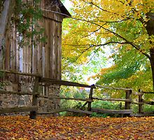 A Pioneer Farm in Fall... by Larry Llewellyn