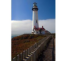 Path to Pigeon Point Photographic Print