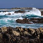 Asilomar by ChrisCouse