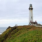 Pigeon Point Lighthouse by ChrisCouse
