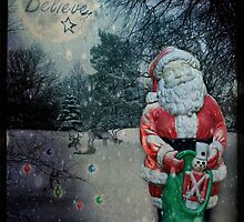Do you believe? Nature's Santa by Myillusions