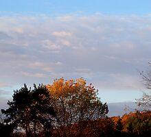 Good October Morning by vigor