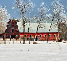 The Old Red Barn by Vickie Emms