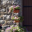 Winnekenni Castle by photosbycoleen