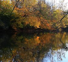 Reflections of Fall - Waynesville Ohio by Tony Wilder