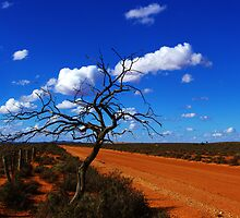 """red road""                                 outback south australia by rina  thompson"