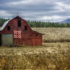 The Linney Family Barn by Christine Annas