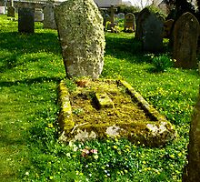 Grave of moss and flowers in Blisland Village by Charmiene Maxwell-batten