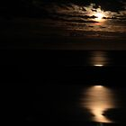Moonlight Over the Gulf - McLeods Beach  by cookieshotz