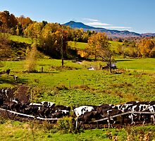 Farming in Vermont by Wanda Dumas