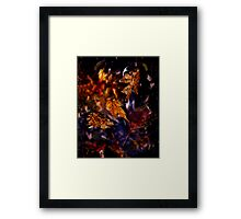 Caught in the Wind Framed Print