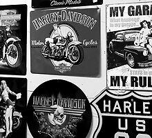 Harley Girls by Sue  Cullumber