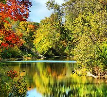 Autumn on The River by Rick  Friedle