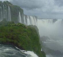 iguazu waterfalls by TRACY WALKER