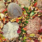 Autumn Stones by ys-eye