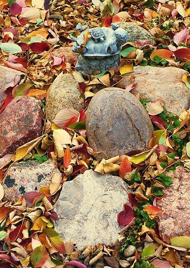 Autumn in my Garden by ys-eye