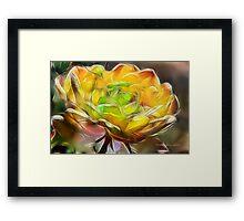 Combined Color Framed Print