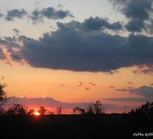 Sun Simply Setting by Debbie Robbins