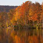 Gatehouse Pond Autumn by ChrisCouse