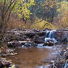 Cheyenne Creek Cascades by Bill Hendricks