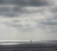 Lone Sailer - Ocean Beach, CA by gabREAL