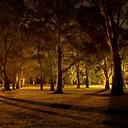 The Gums by Alex Frayne