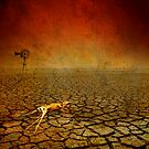 Dusk in a Sunburt Country by Geraldine (Gezza) Maddrell