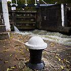 Bollard and leaves by Chris West