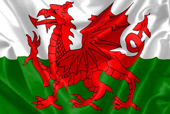 Welsh Flag by neil270