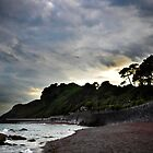 Meadfoot Moods, Torbay Devon by pixel8it