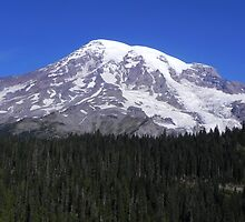 Beautiful Mount Rainier by Kathy Yates