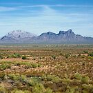 Picacho Peak by Angela Pritchard